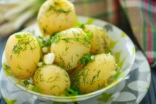 Ziemniaki w roli głównej