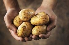 """Jak """"odmłodzić"""" stare ziemniaki?"""